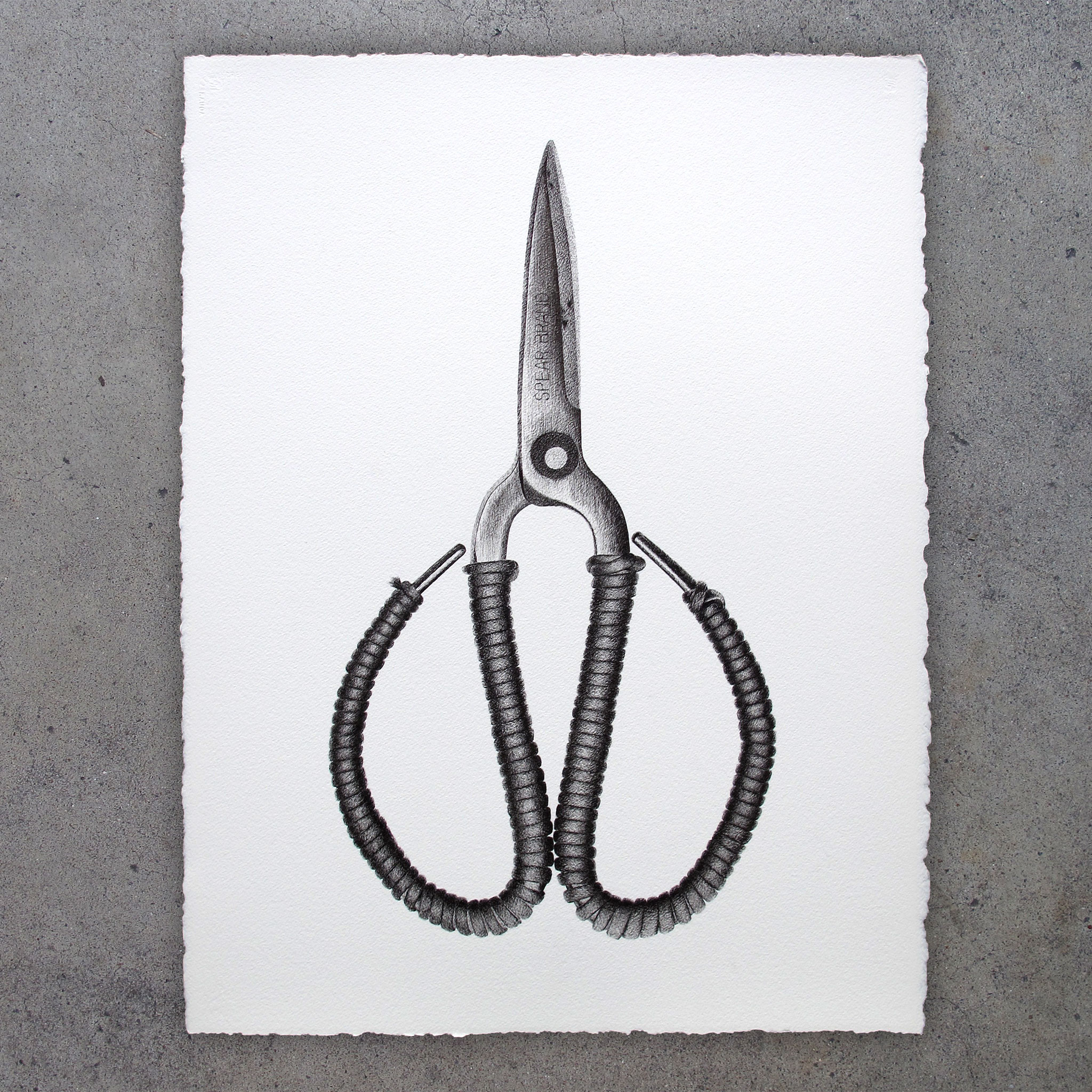 Embroidery Shears